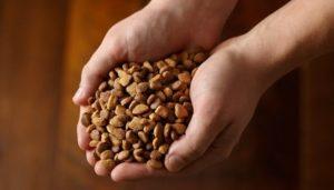 4 motivos para não comprar ração a granel